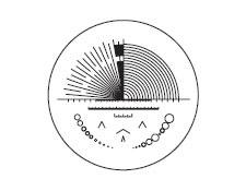 Multi-Scale